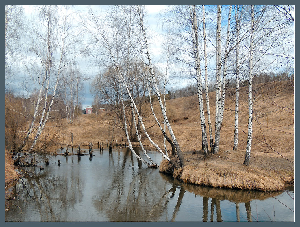 "photo ""April"" tags: landscape, nature, forest, river, spring, water, апрель"