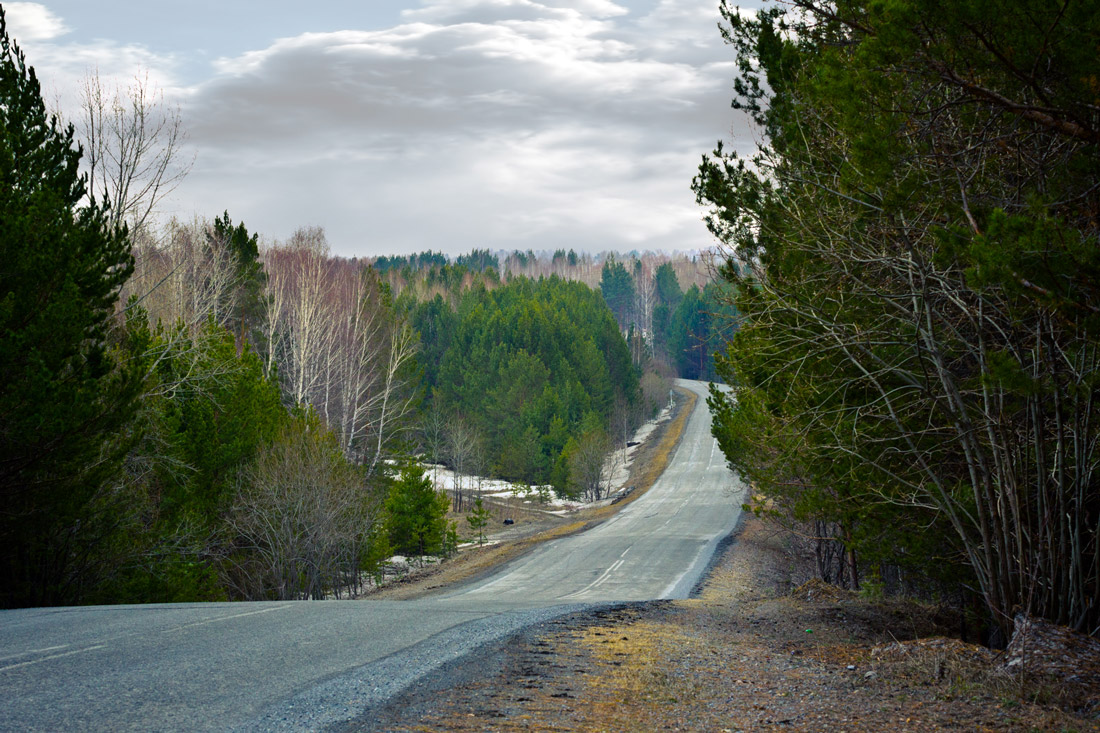 "photo ""The winding road ..."" tags: landscape, nature, Krasnoyarsk, forest, road, sky, Ачинск, лесная дорога, сибирь"