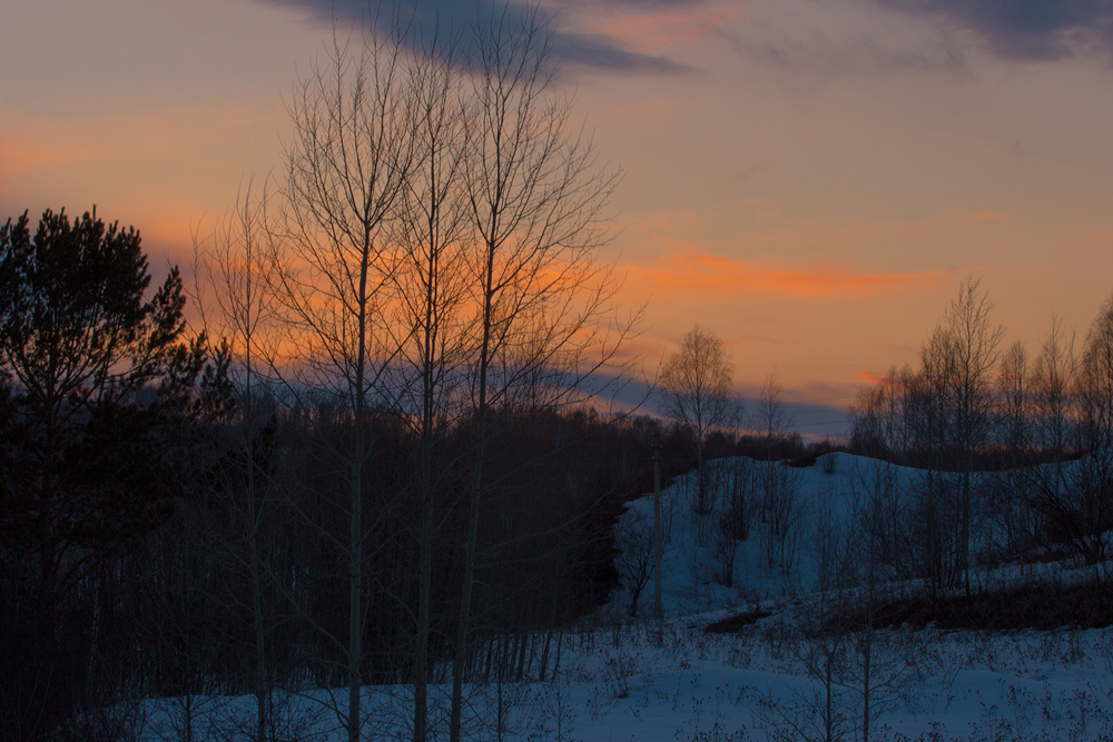 "photo ""***"" tags: landscape, evening, forest, spring, sunset, Ачинск, деревья, сибирь"