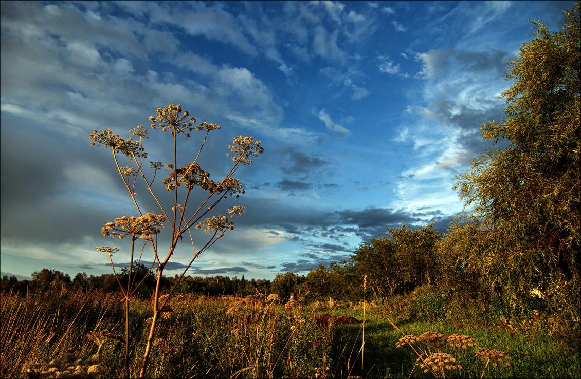 """фото """"***"""" метки: природа, пейзаж,"""