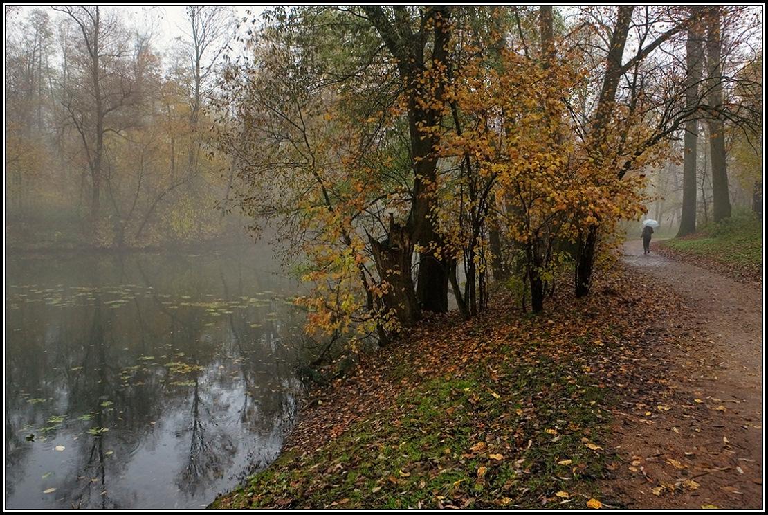 """фото """"Моросит"""" метки: пейзаж, дождь, осень, туман"""