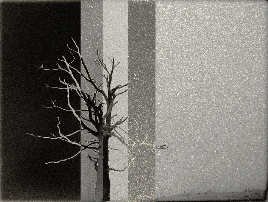 """фото """"***"""" метки: digital art, разное, черно-белые,"""