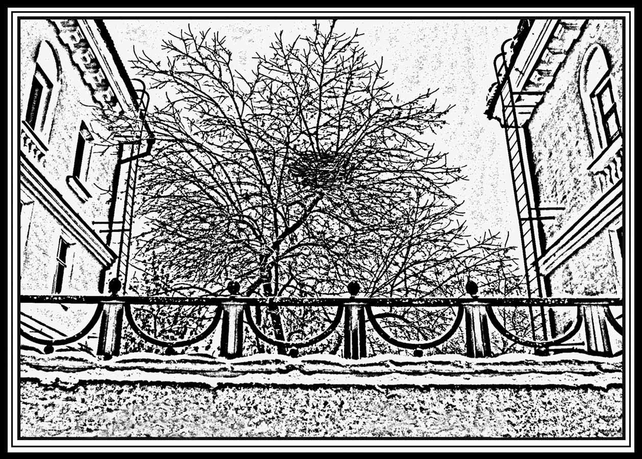 """фото """"Жильё"""" метки: архитектура, черно-белые, город, гнездо, дома, забор"""