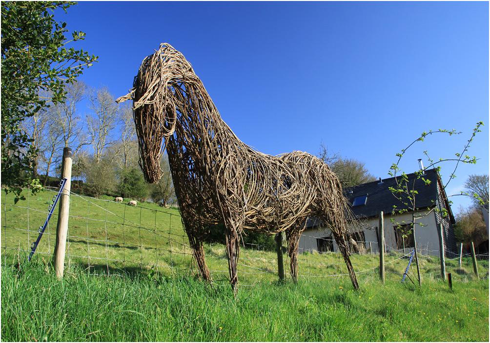 "фото ""Про лошадь."" метки: путешествия, человек и природа"