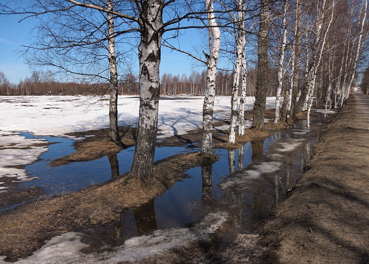 """фото """"Апрельский мотив"""" метки: пейзаж,"""