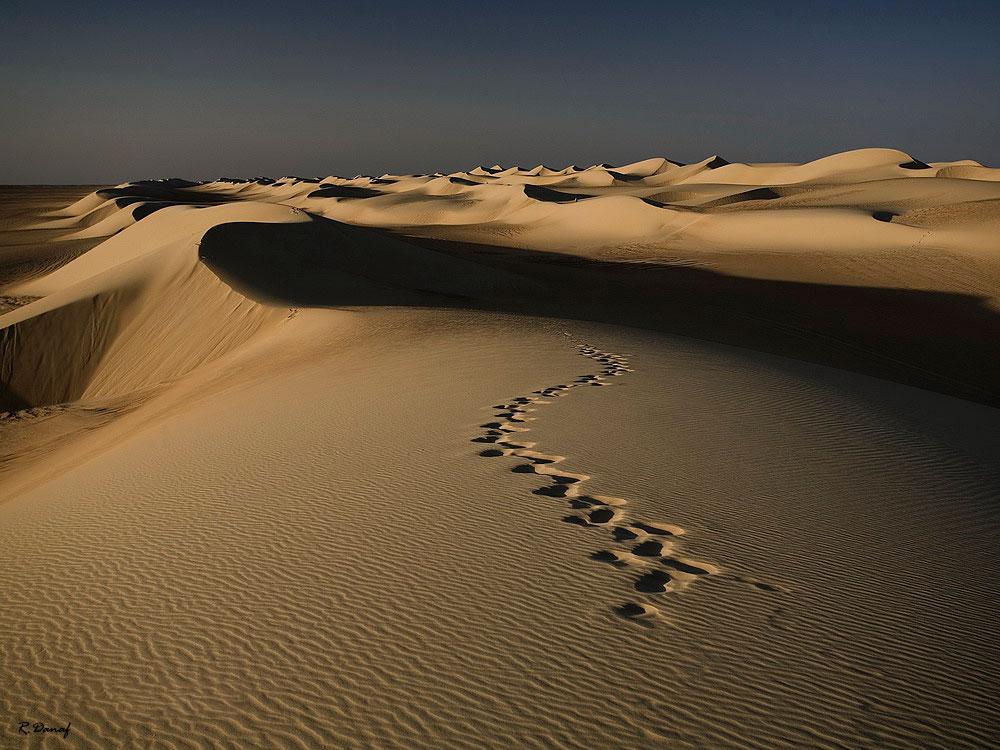"фото ""Dunes 14"" метки: путешествия, пейзаж, desert, Африка"