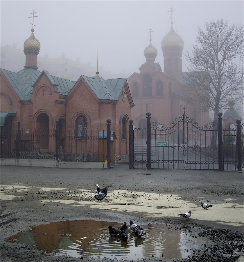 "photo ""Autumn spring"" tags: city, fog, spring"