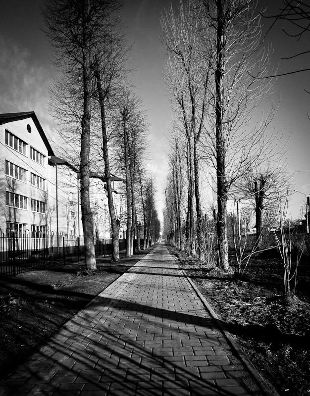 """photo """"***"""" tags: landscape, black&white, city,"""