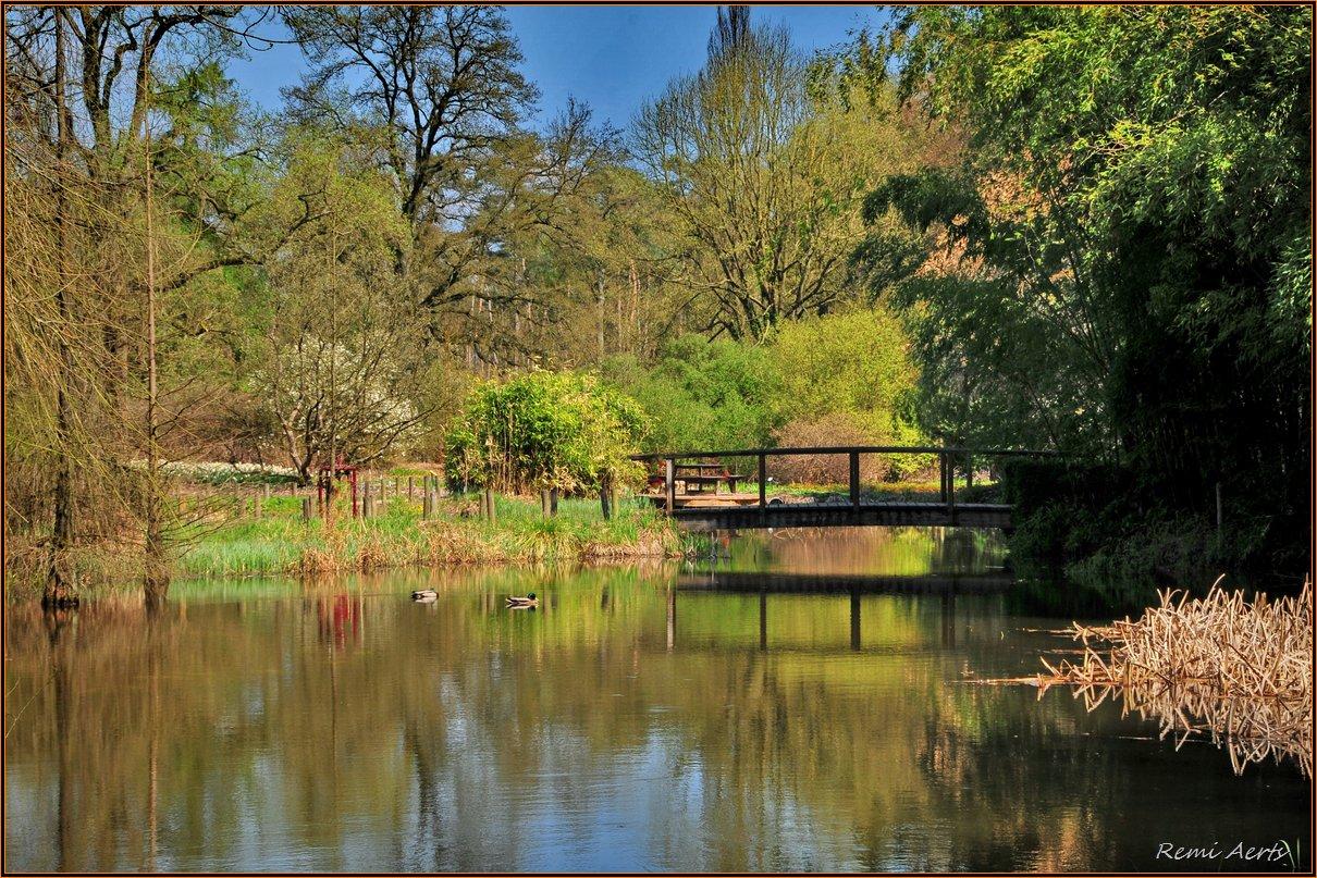 "фото ""***"" метки: пейзаж, природа, spring, вода"