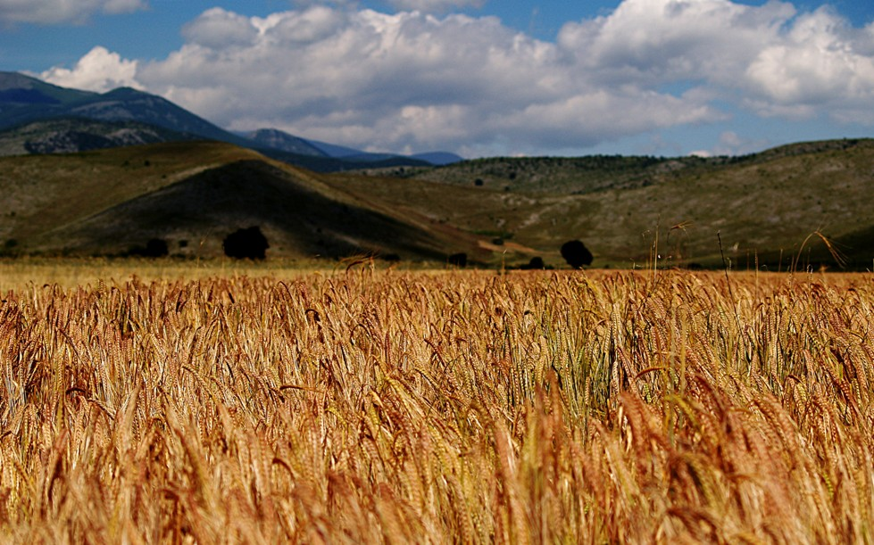 """фото """"***"""" метки: пейзаж, Ελλάδα"""
