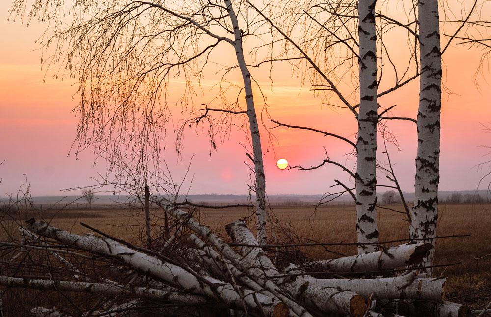 "фото ""Тамбовский закат"" метки: пейзаж,"