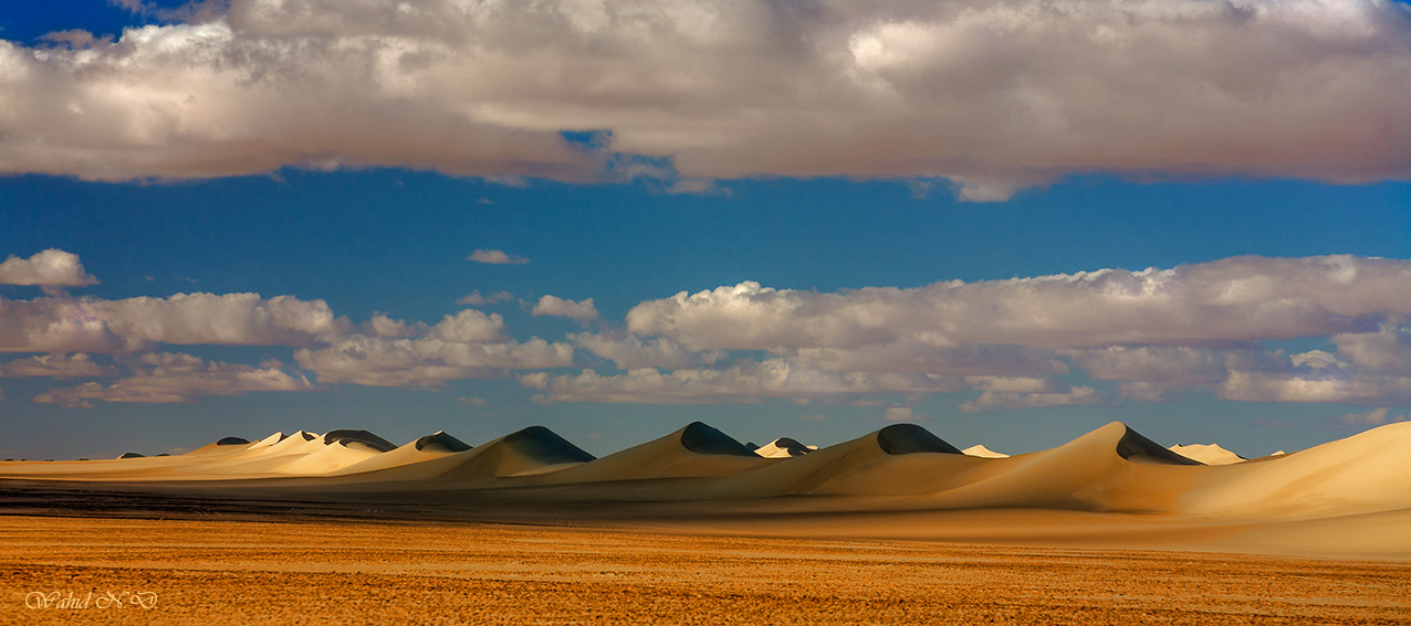 "photo ""Melody of Dunes"" tags: landscape, nature, travel, Africa, Dseert"