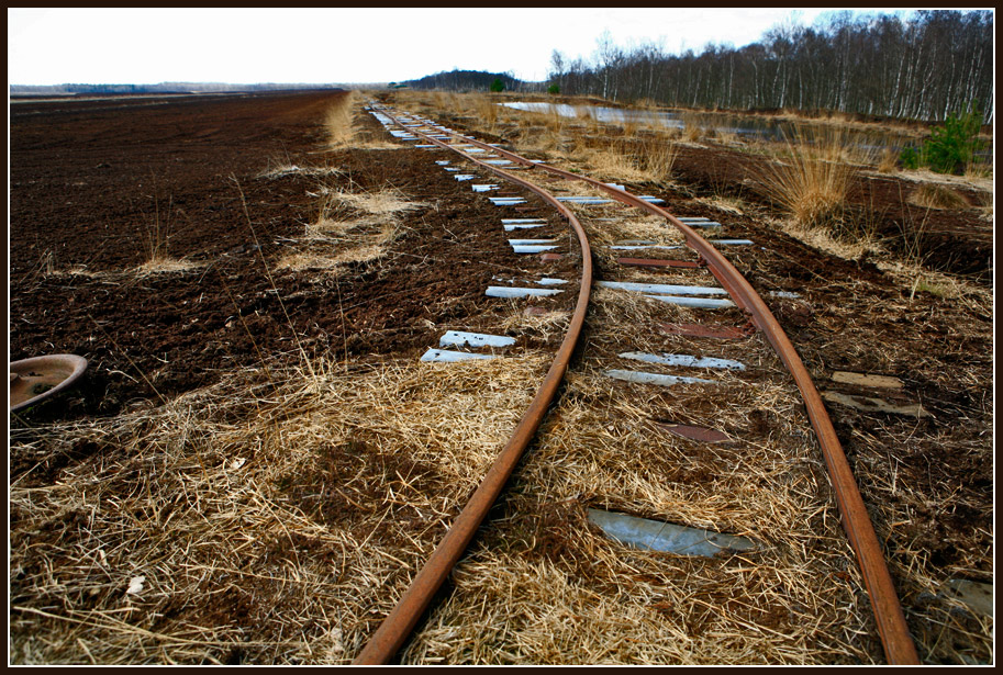 "photo ""In the bog"" tags: landscape, reporting, bog, rail, railway"