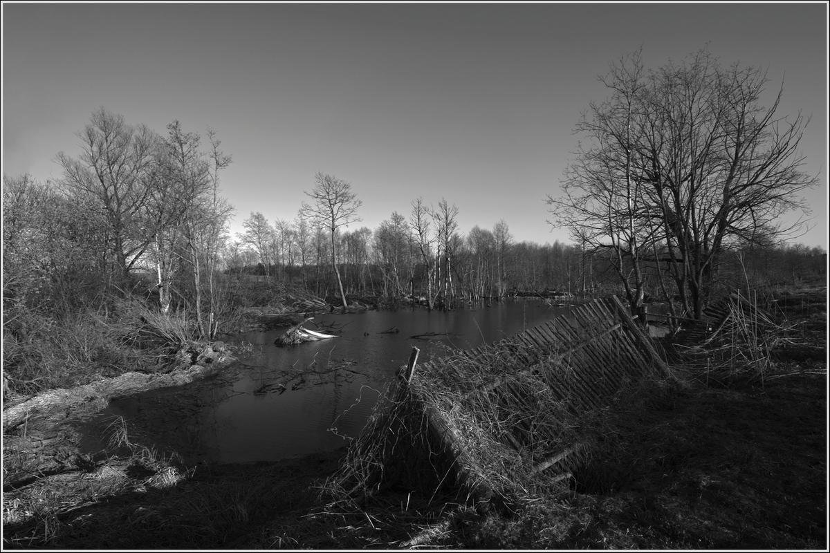 """фото """"Заброшенная весна"""" метки: пейзаж, весна"""