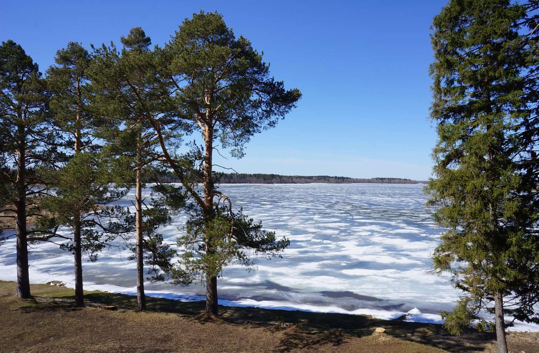 """фото """"Бородаевское озеро"""" метки: пейзаж,"""