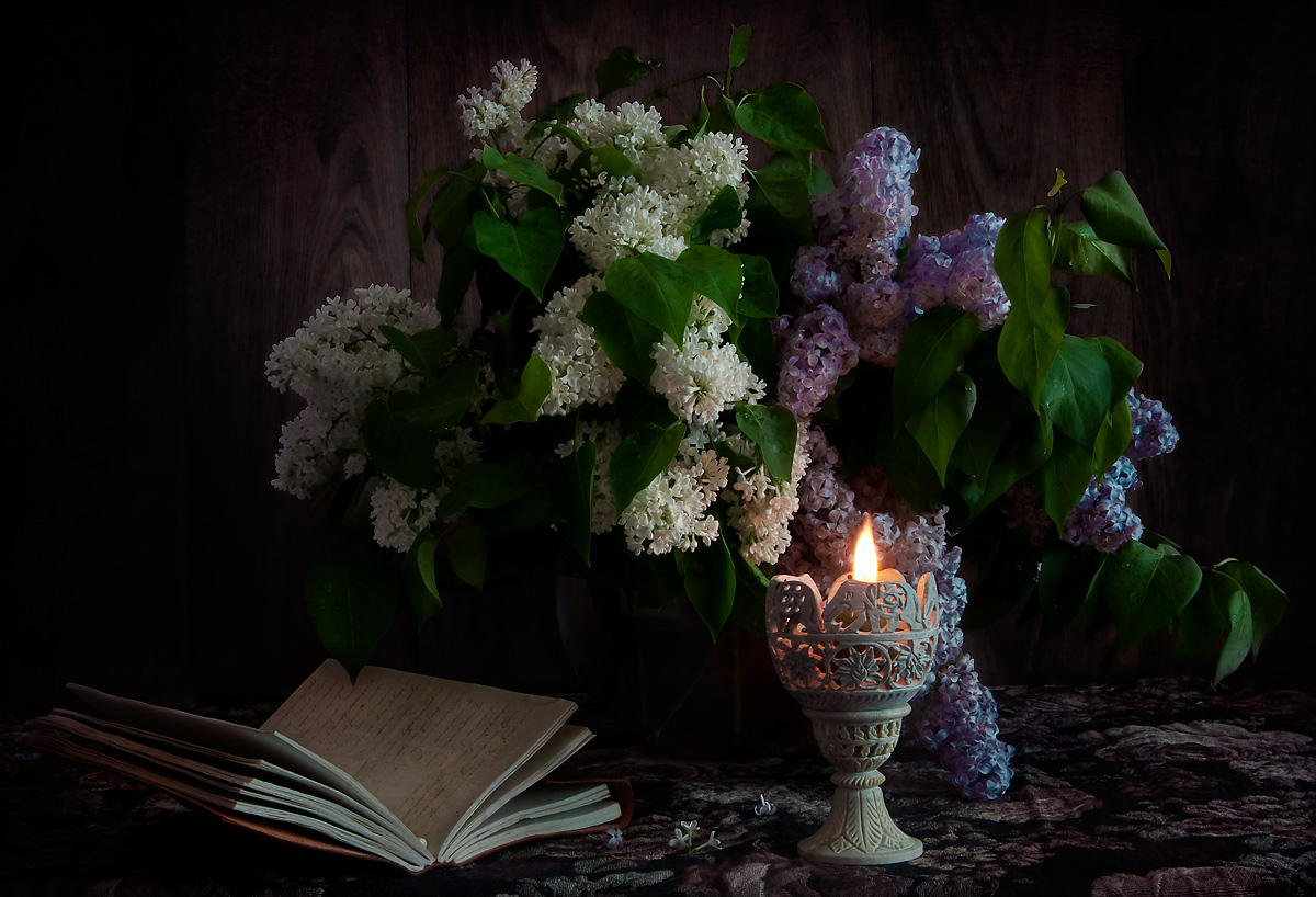 "photo ""Night with the scent of lilacs"" tags: still life,"