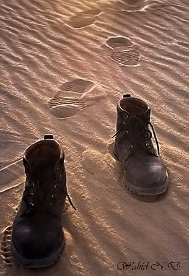 "фото ""Vanished..."" метки: жанр, юмор, путешествия, Dseert, Африка"