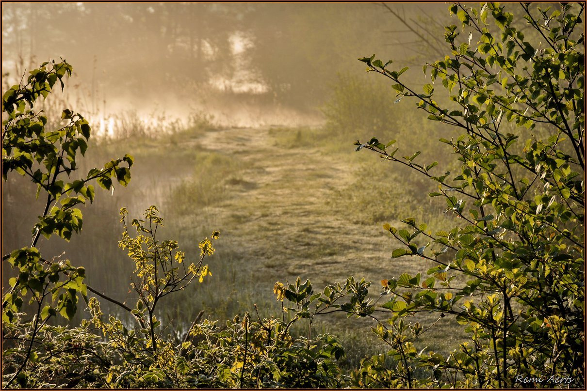 """фото """"***"""" метки: пейзаж, природа, spring"""