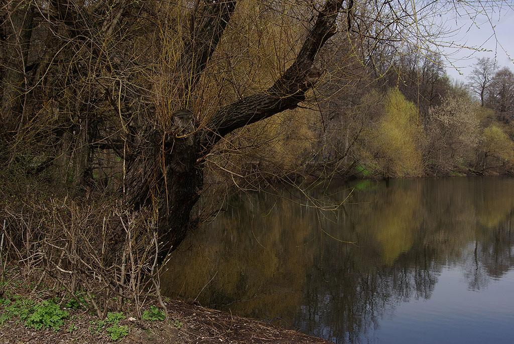 """фото """"Осенне-весенняя."""" метки: пейзаж, город,"""