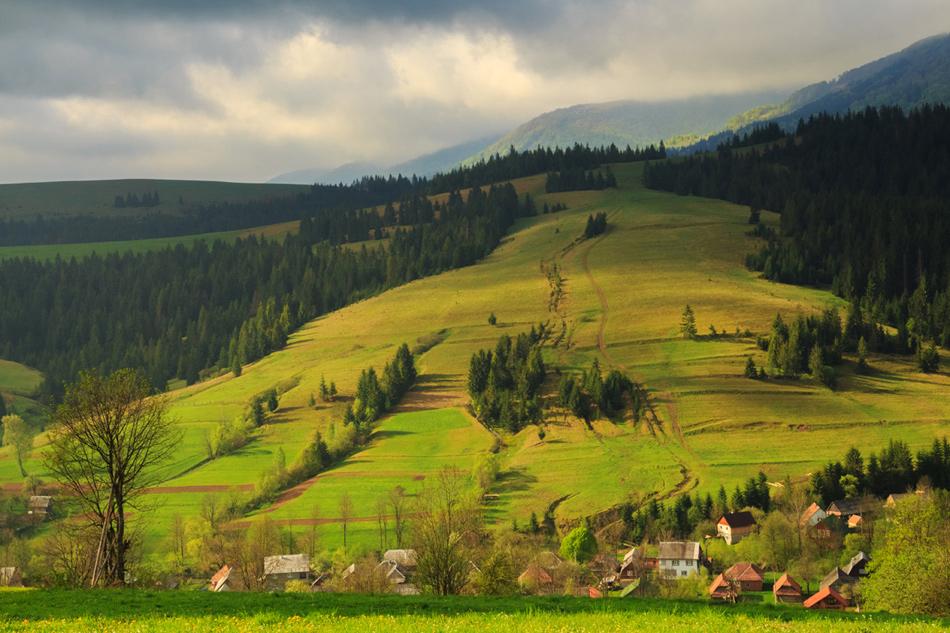 """фото """"Утро в Карпатах"""" метки: пейзаж, природа, путешествия, Карпаты, горы, деревня, лес, поля, простор, путешествие, трава, утро"""