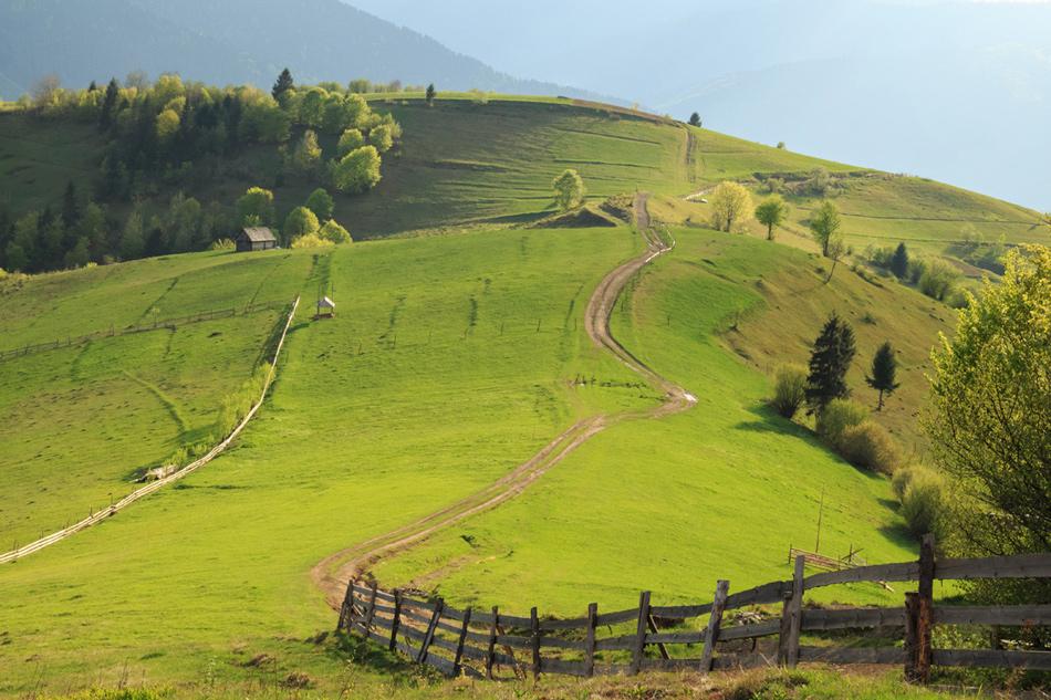 """фото """"изумрудные склоны Карпат"""" метки: природа, пейзаж, путешествия, Карпаты, горизонт, горы, закат, лес, лужайка, небо, поля, простор, путешествие, трава, утро"""