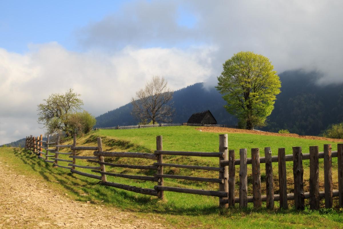 """фото """"Утром на хуторе"""" метки: пейзаж, путешествия, природа, Карпаты, горы, лес, лужайка, облака, поля, простор, путешествие, сельская, трава, утро, ферма, холмы"""