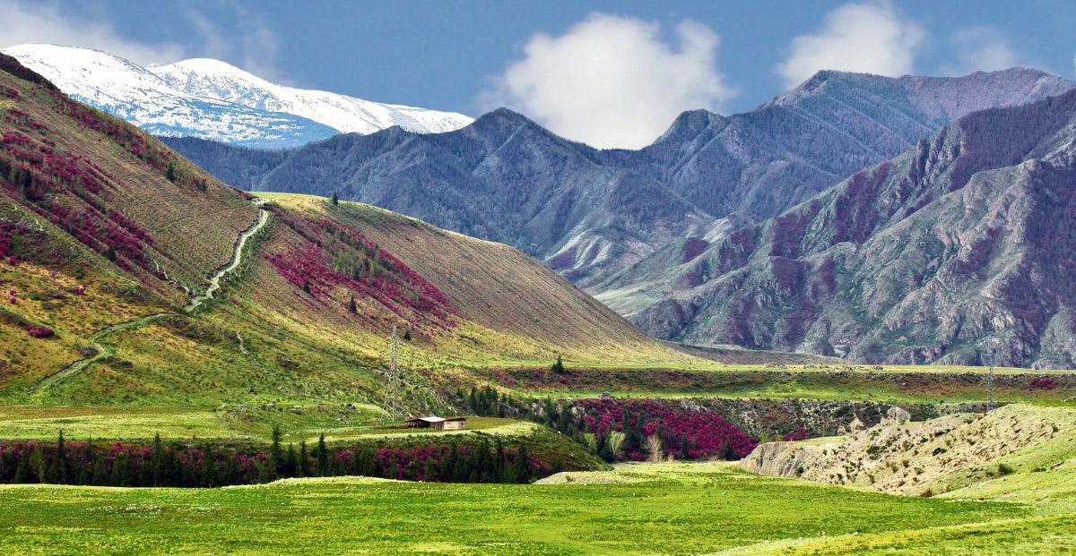 """фото """"Дорога в горы"""" метки: пейзаж,"""