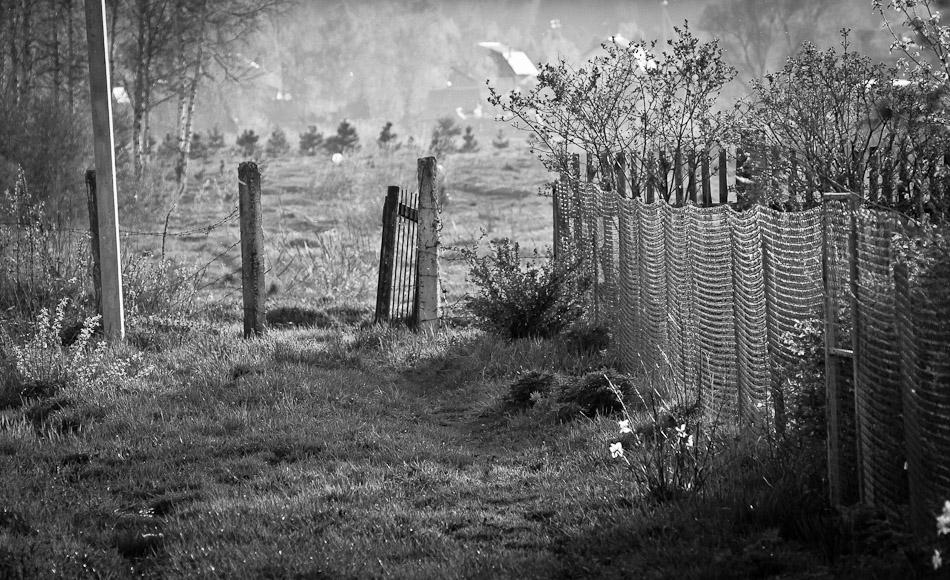 """фото """"Про дачную калитку..."""" метки: репортаж, природа, черно-белые, весна, лес, отдых, солнце"""