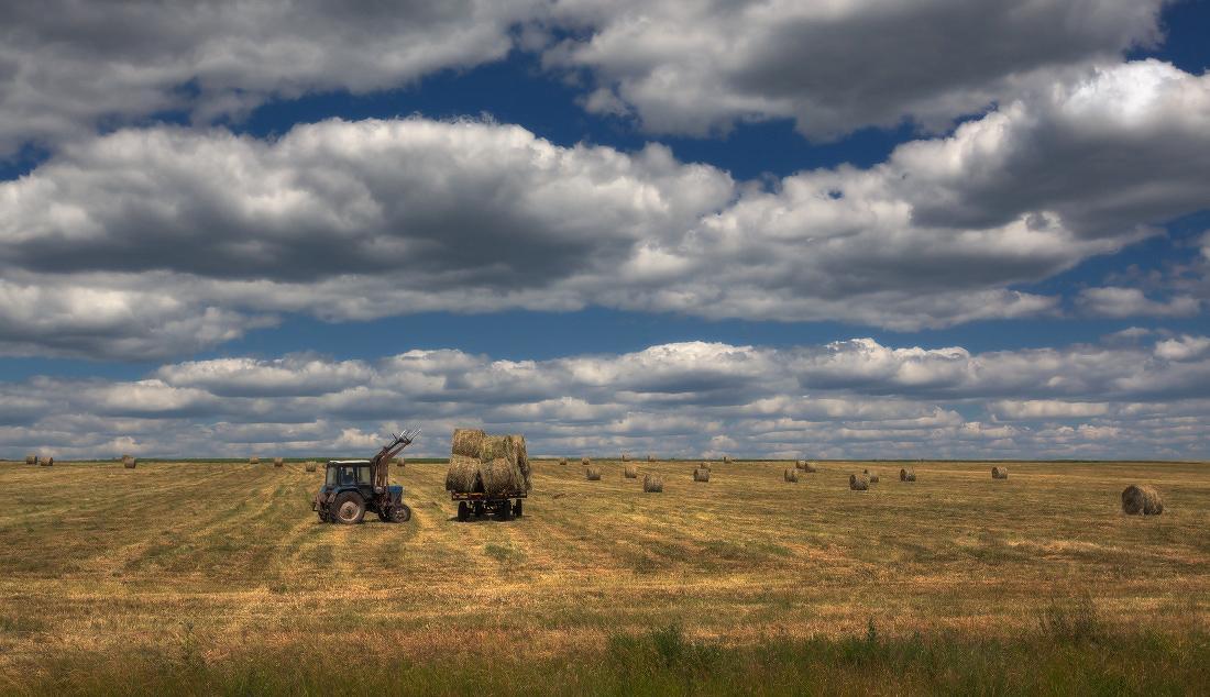 "photo ""***"" tags: landscape, clouds, field, grass, summer, валики, сено, тележка, трактор"