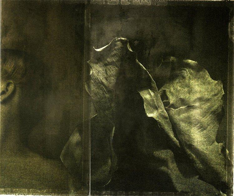 "фото ""ELEPHANT"" метки: digital art, абстракция, Art, animals, artistic, dark, digital, fine art, surrealist"