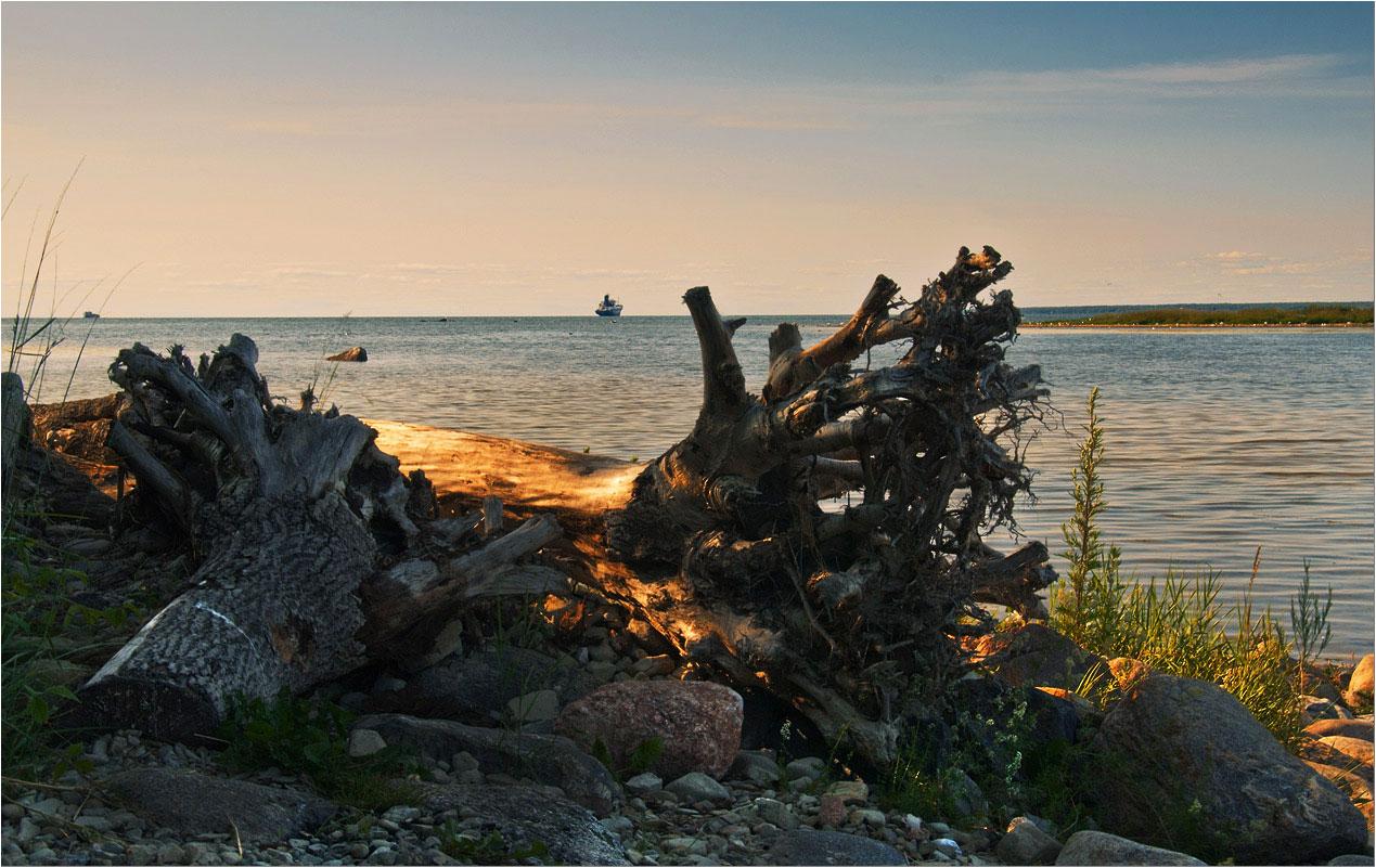 """фото """"На диких берегах."""" метки: пейзаж,"""