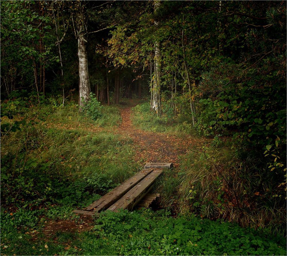 """photo """"Bridge 2"""" tags: landscape,"""