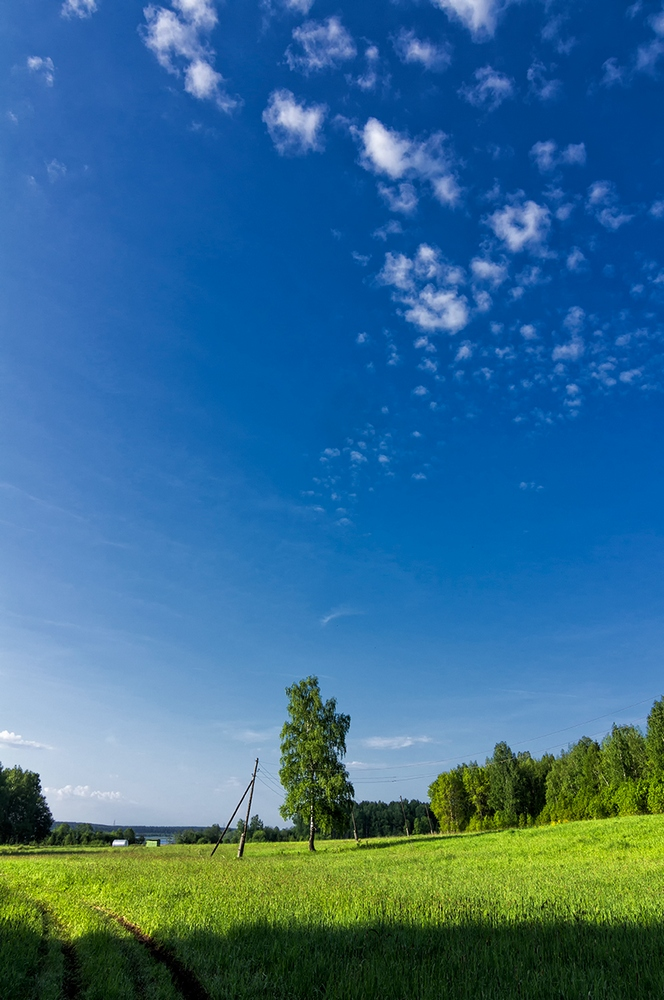 "photo ""***"" tags: nature, clouds, forest, summer"