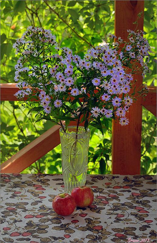 "photo ""Dacha bouquet"" tags: still life,"
