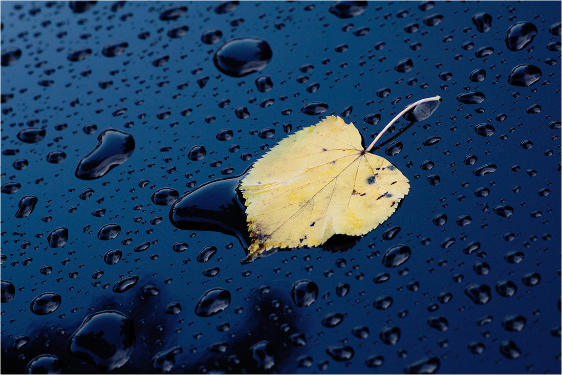 """фото """"Предчувствие Осени"""" метки: натюрморт,"""