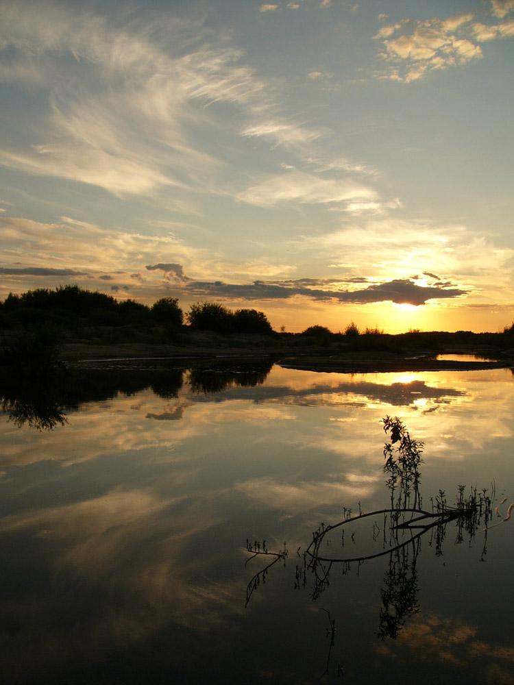 "фото ""Пейзаж с птичкой"" метки: пейзаж, природа, берег, вода, закат, лето, облака, озеро, река"