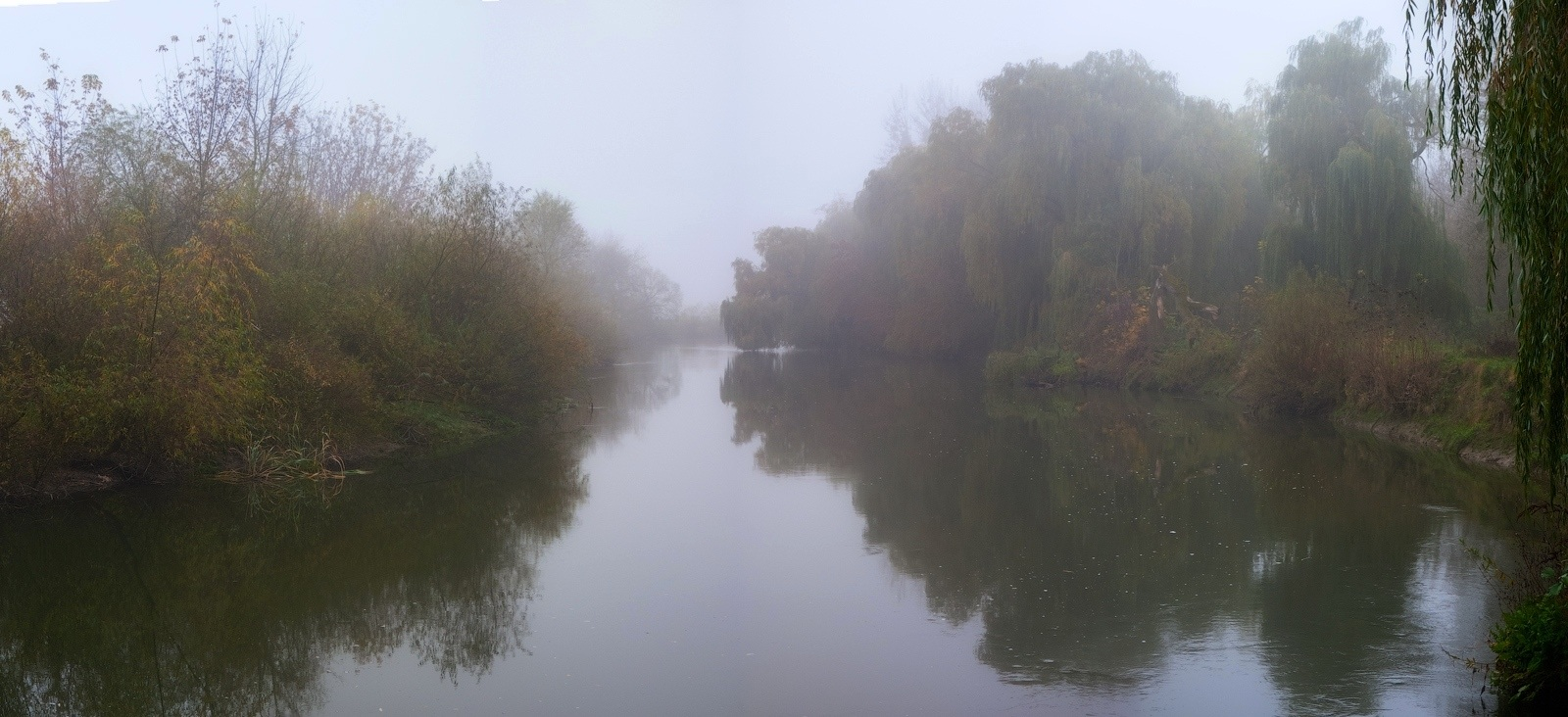 "фото ""Август — уже не лето..."" метки: пейзаж, природа, панорама, август, ива, река, туман"