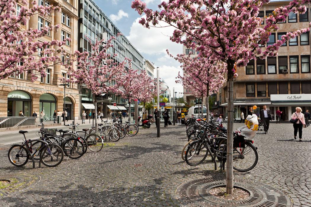 """фото """"Про велосипеды и цветущие деревья."""" метки: город,"""