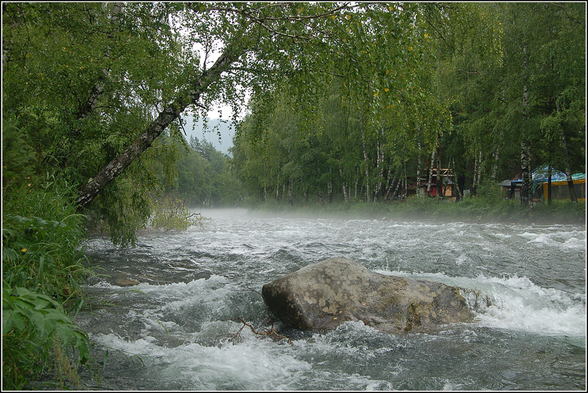 """photo """"***"""" tags: landscape, forest, river, summer"""