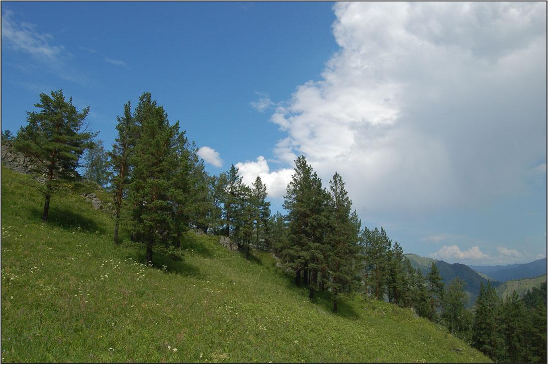 """фото """"Изменения погоды"""" метки: пейзаж, горы, лес, лето, облака"""