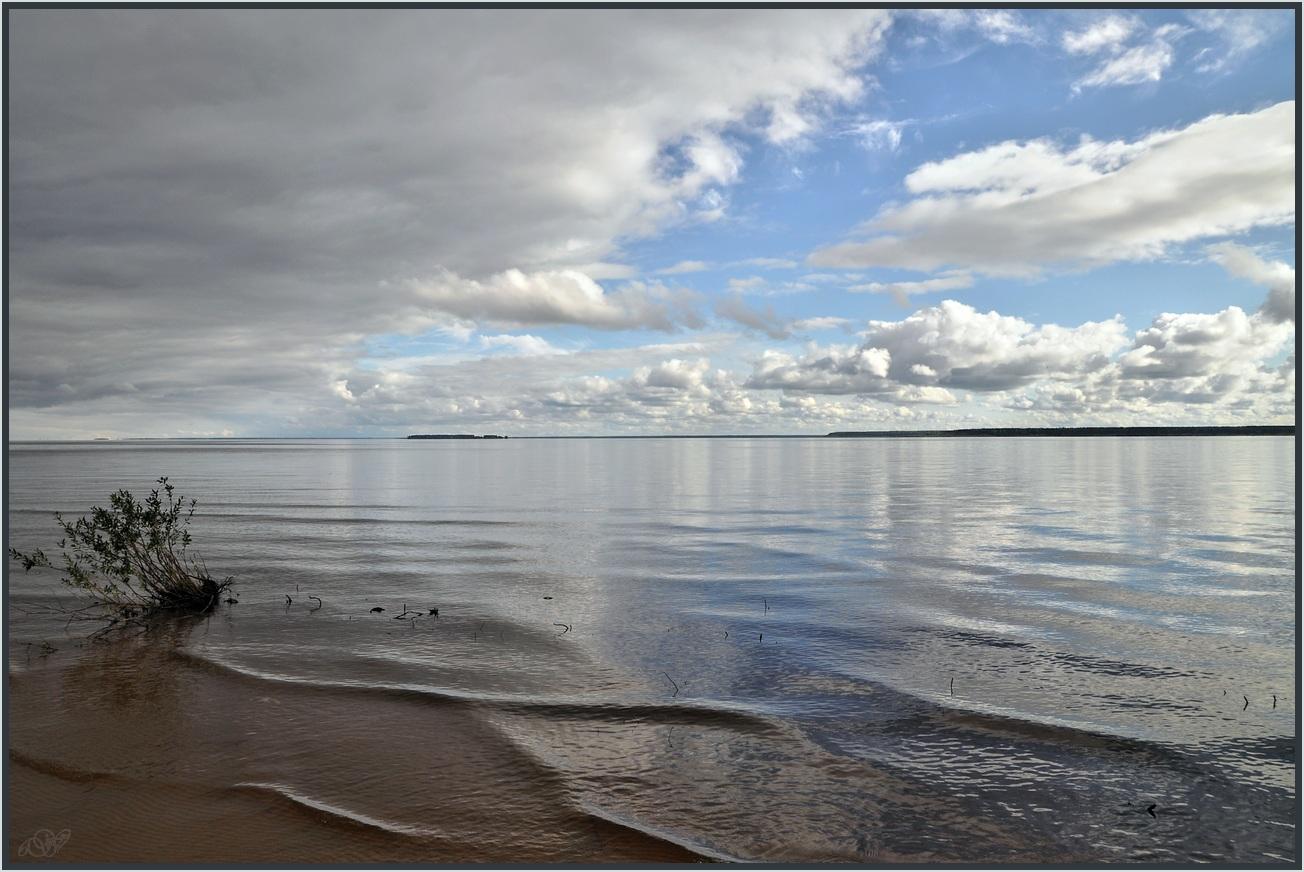 "photo ""***"" tags: landscape, nature, river, summer, water, Вологодчина, Шексна"
