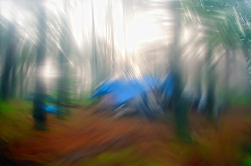 "photo ""***"" tags: landscape, Europe, forest, man, summer, water, woman, Литва, водка, итд, мокрыйфотограф, оченькрасиво"