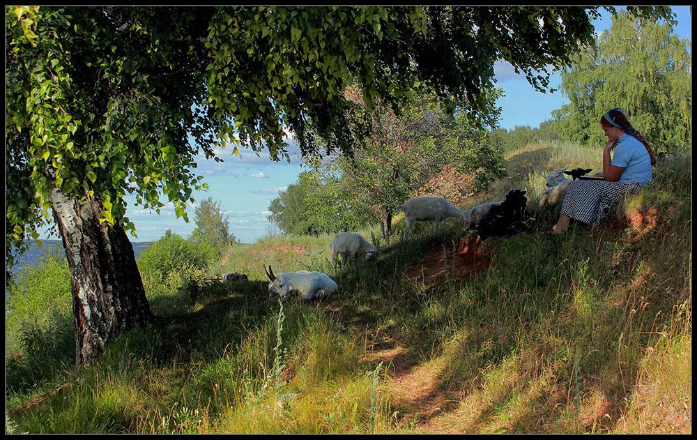 "photo ""***"" tags: landscape, nature, summer"