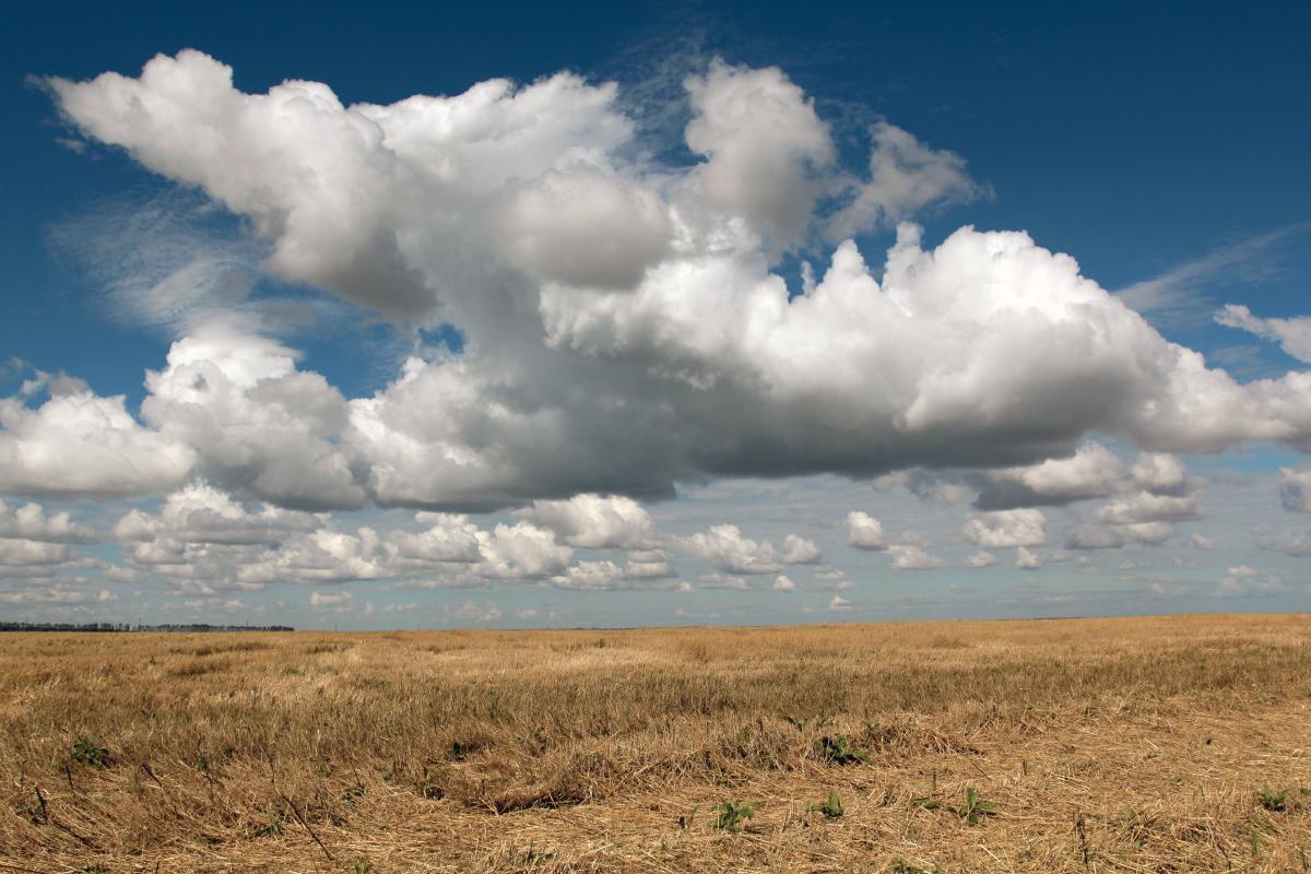 """фото """"Ангелы сеют доброе"""" метки: пейзаж,"""