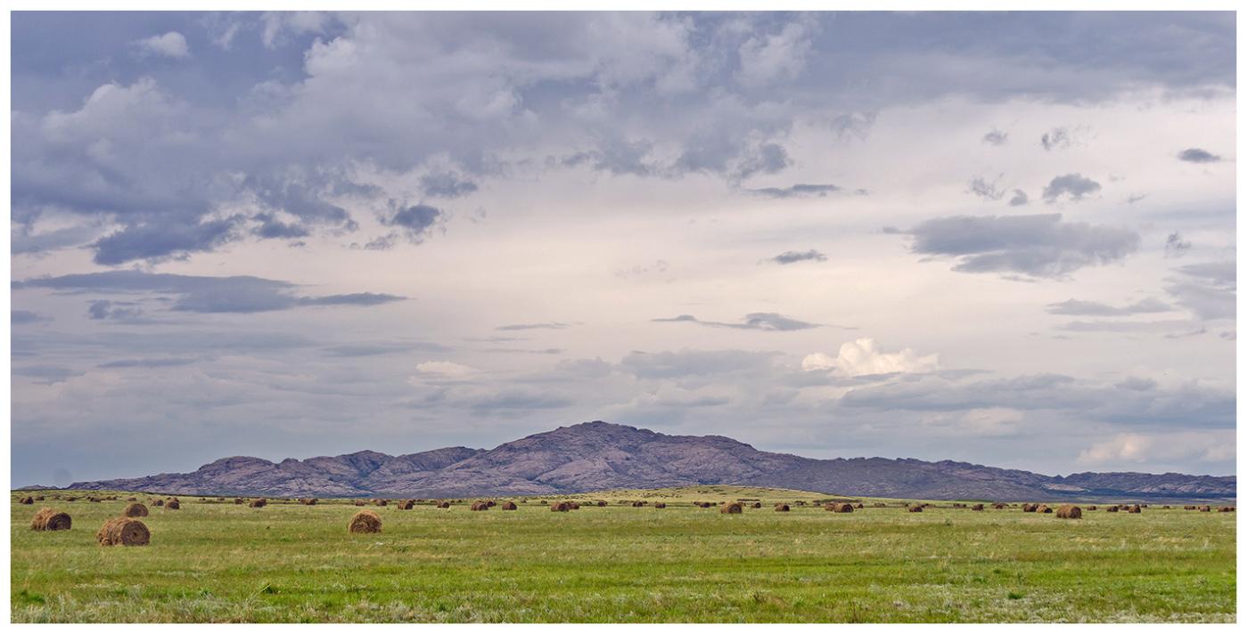 """фото """"Перед дождём..."""" метки: пейзаж, путешествия, природа, Азия, Казахстан, небо, степь, туризм"""