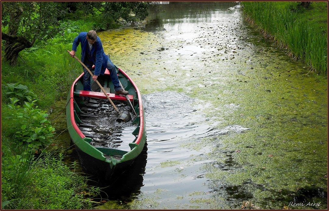 """фото """"Help, I'm drowning!!"""" метки: пейзаж, природа, репортаж,"""