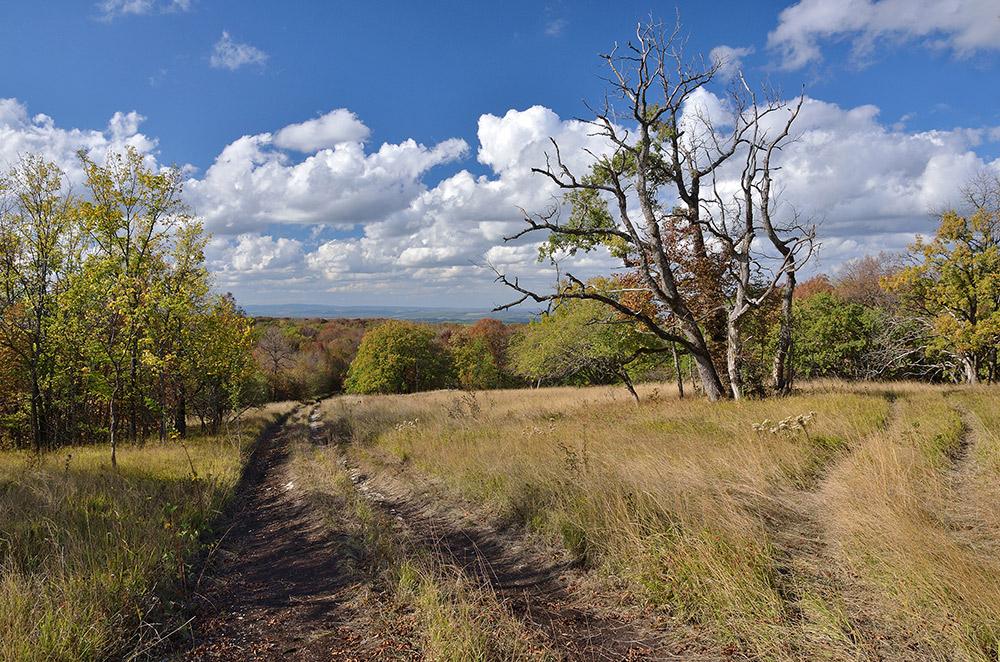 "фото ""Осень в предгорьях."" метки: пейзаж,"