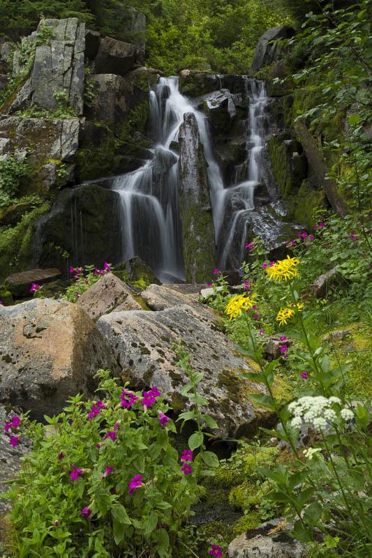 "фото ""Cascades and colors"" метки: пейзаж, природа, Mount Rainier, Wildflowers, waterfall, вода"