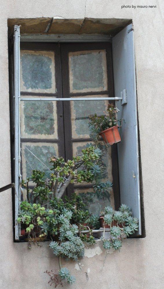 "фото ""window"" метки: стрит-фото,"