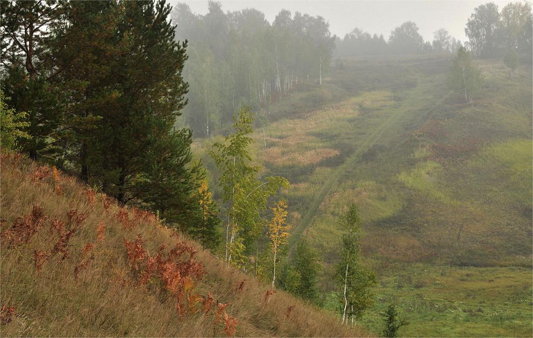"фото ""Легкие штрихи осени..."" метки: природа, пейзаж,"